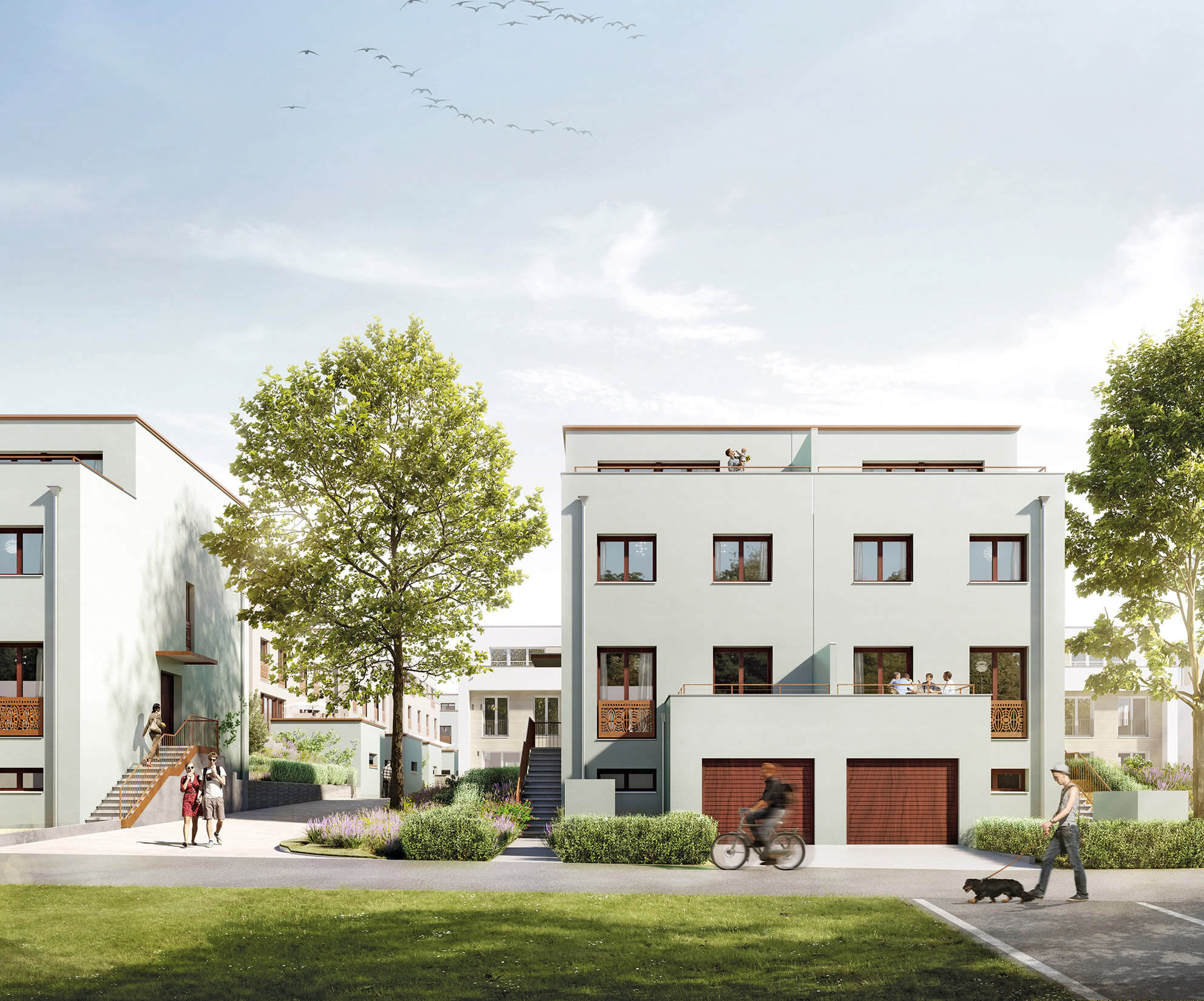 Doppelhaus WEG TYP III, Visualisierung